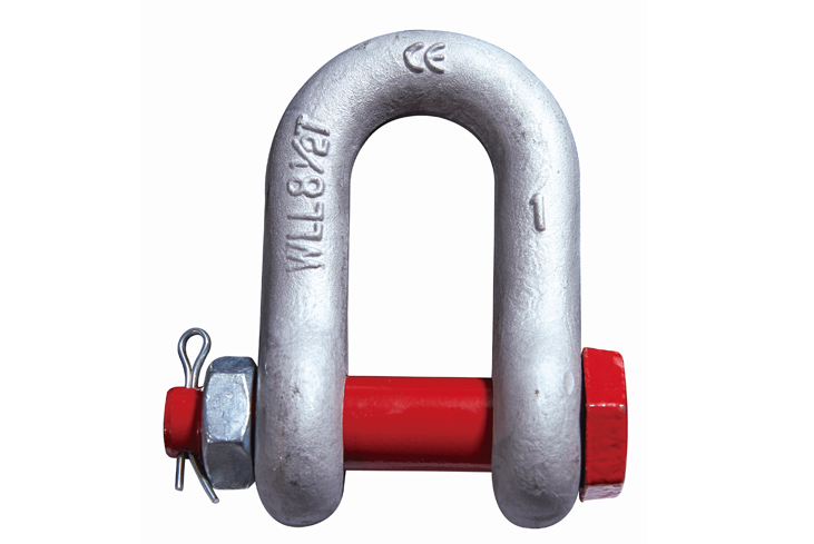 Dee Bolt _ Nut Shackle